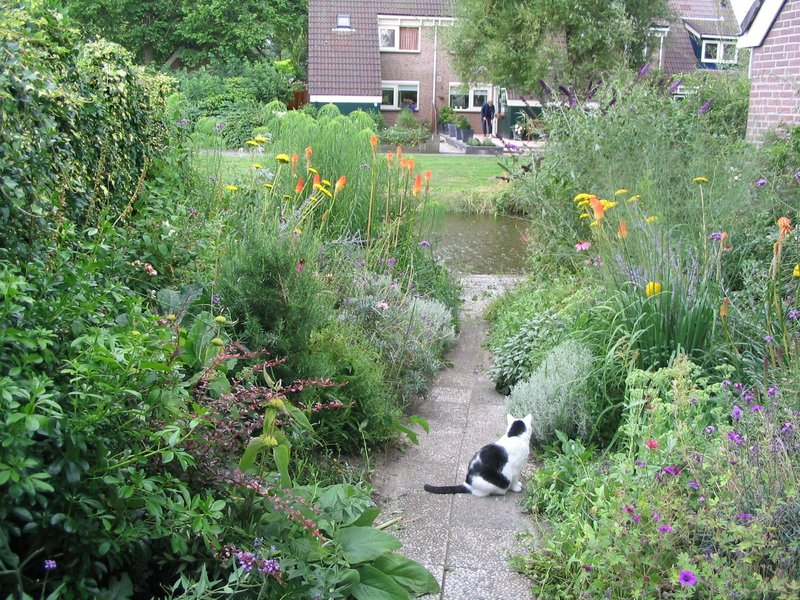 Beplantingsplan voor bloementuin in monnickendam for Tuinontwerp noord holland